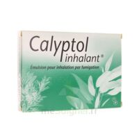CALYPTOL INHALANT, émulsion pour inhalation par fumigation à MONTPELLIER
